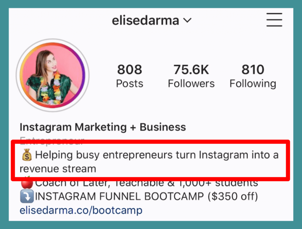 "Elise Darma's Instagram Bio: ""Helping busy entrepreneurs turn Instagram into a revenue stream."""