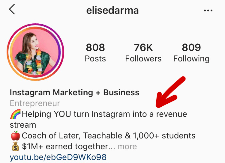 "Red arrow pointing to Elise's Instagram bio tagline, ""Helping YOU turn Instagram into a revenue stream"""