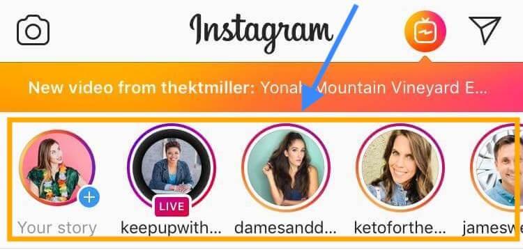 elise darma instagram featured accounts stories engagement